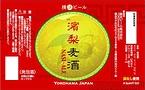 「ヤング荘」の北風総貴さんがデザインした「濱梨麦酒」のラベル